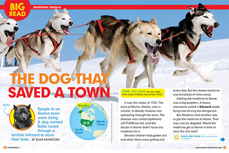 Storyworks 2 article featuring several dogsled dogs racing in the snow